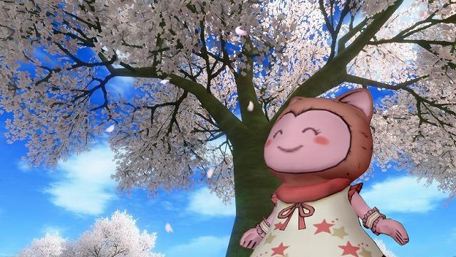桜の木で挨拶するぷくみ