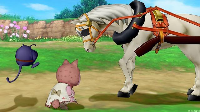 馬のケガを心配するぷくみ