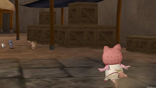 野良猫に向かって走り出すぷくみ